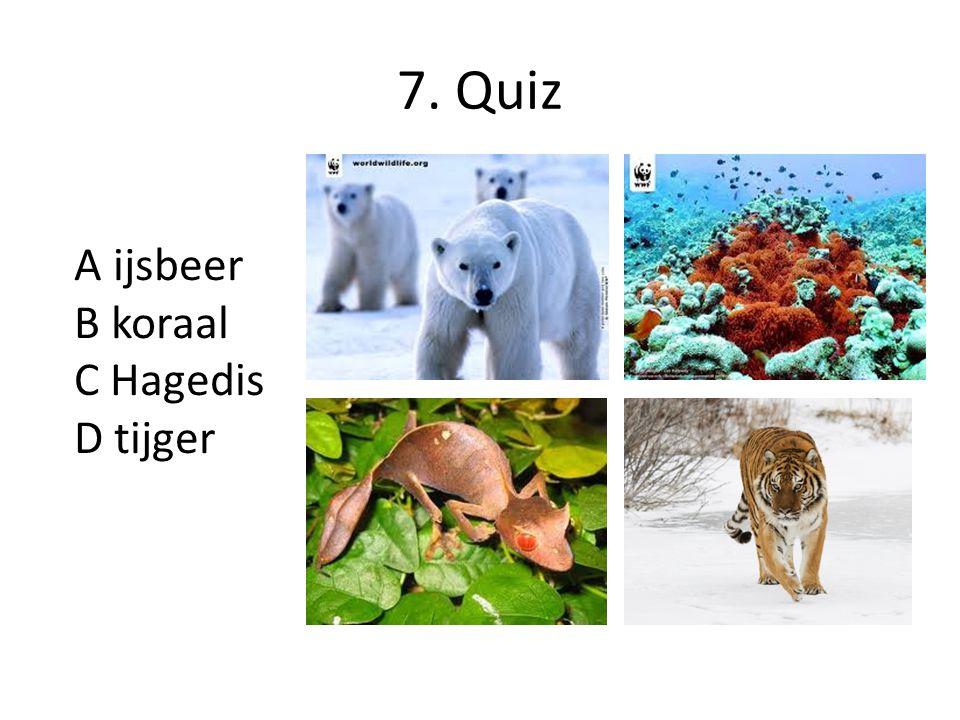 7. Quiz A ijsbeer B koraal C Hagedis D tijger