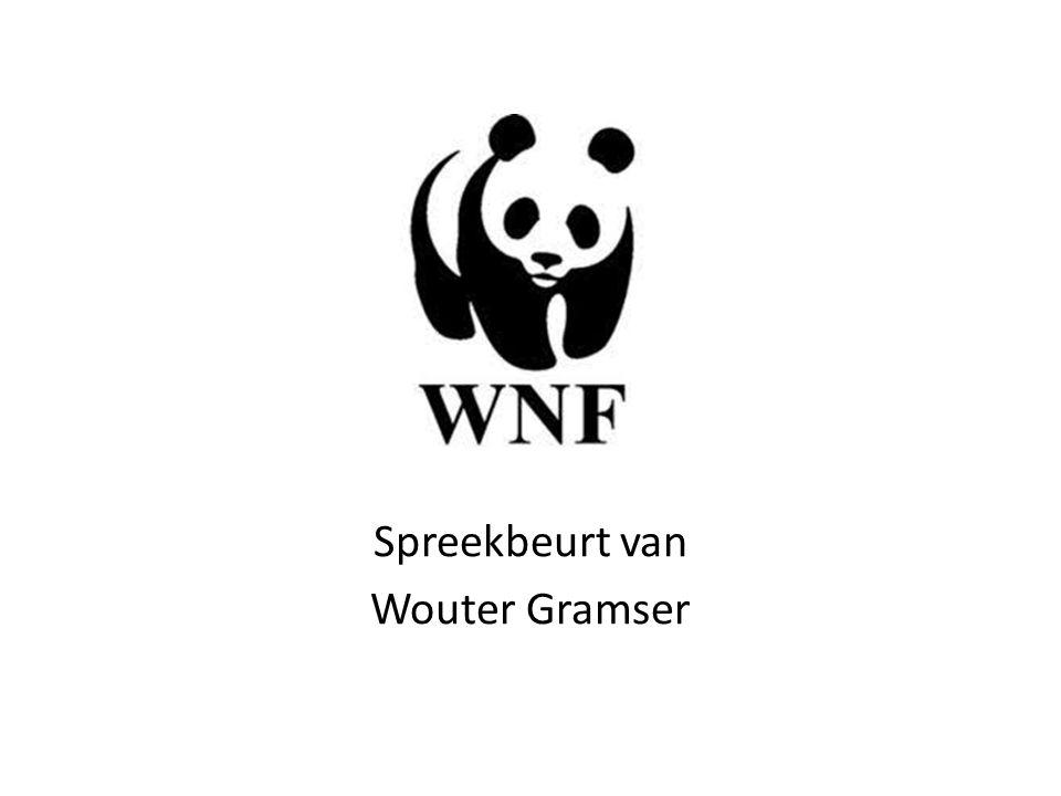 Spreekbeurt van Wouter Gramser