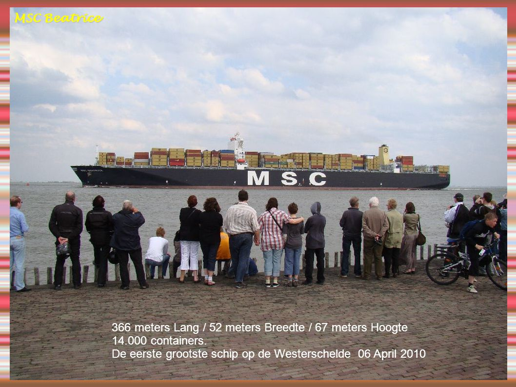 MSC Beatrice 366 meters Lang / 52 meters Breedte / 67 meters Hoogte.
