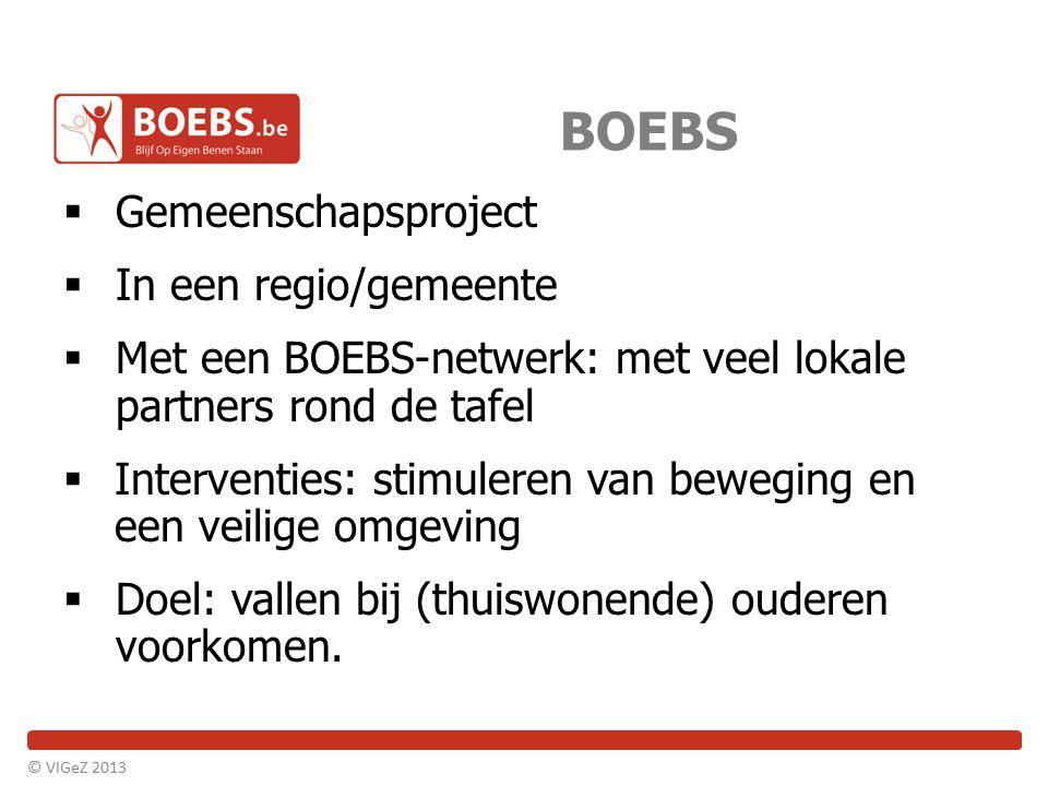 BOEBS Gemeenschapsproject In een regio/gemeente