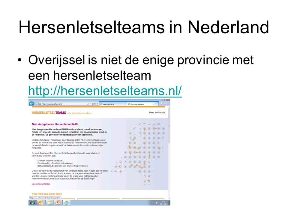 Hersenletselteams in Nederland