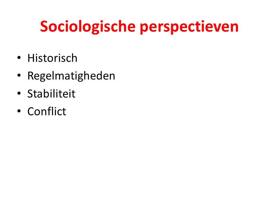 Sociologische perspectieven