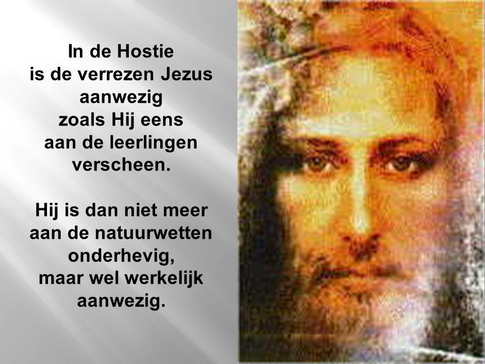 In de Hostie is de verrezen Jezus aanwezig zoals Hij eens aan de leerlingen verscheen.