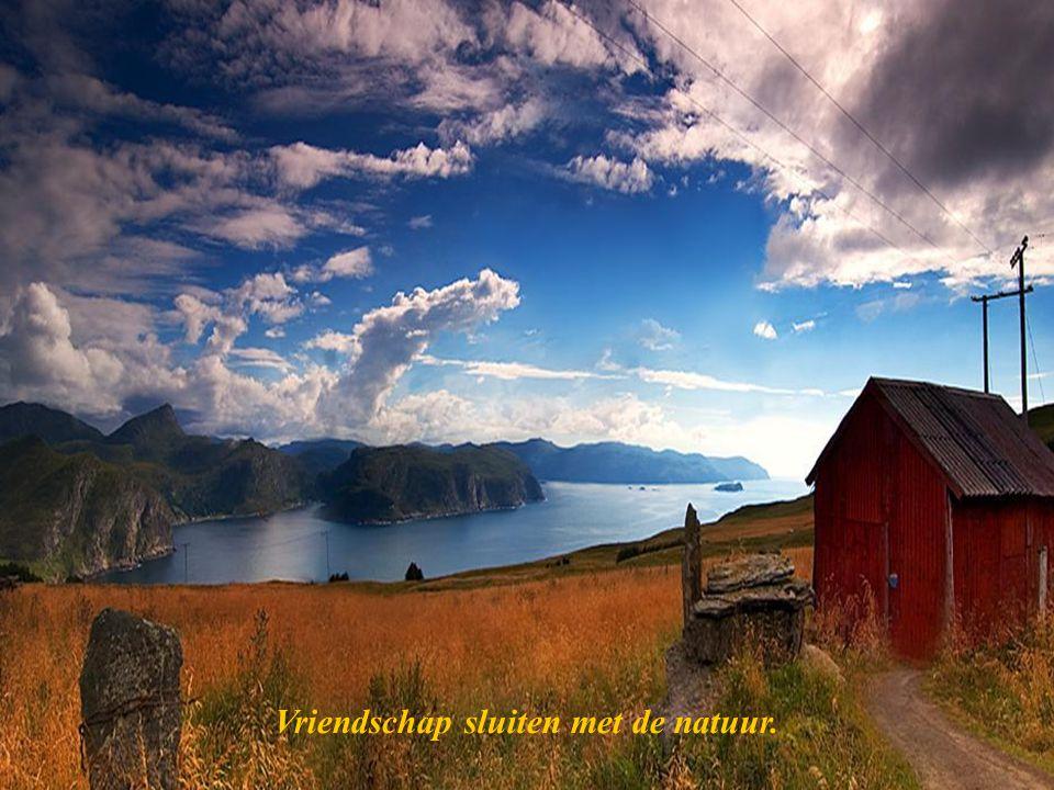 Vriendschap sluiten met de natuur.