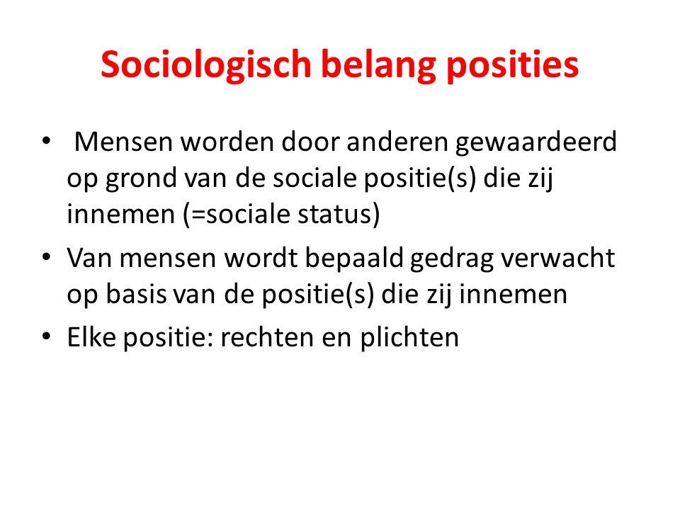 Sociologisch belang posities