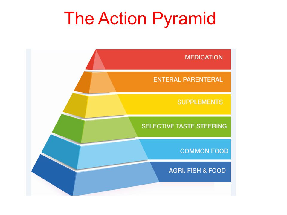 The Action Pyramid