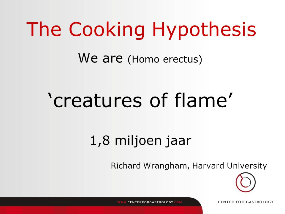 The Cooking Hypothesis