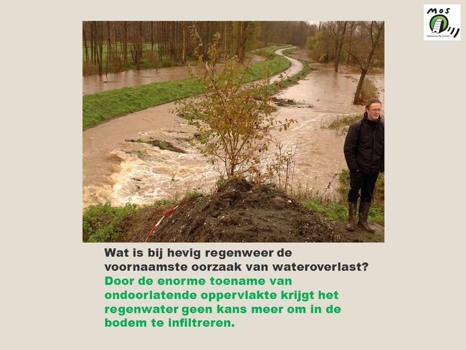 Wat is bij hevig regenweer de voornaamste oorzaak van wateroverlast