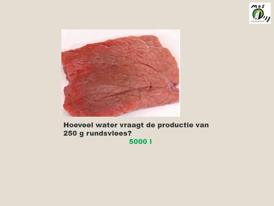 Hoeveel water vraagt de productie van 250 g rundsvlees