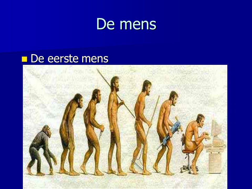 De mens De eerste mens.