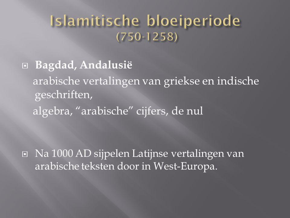 Islamitische bloeiperiode (750-1258)