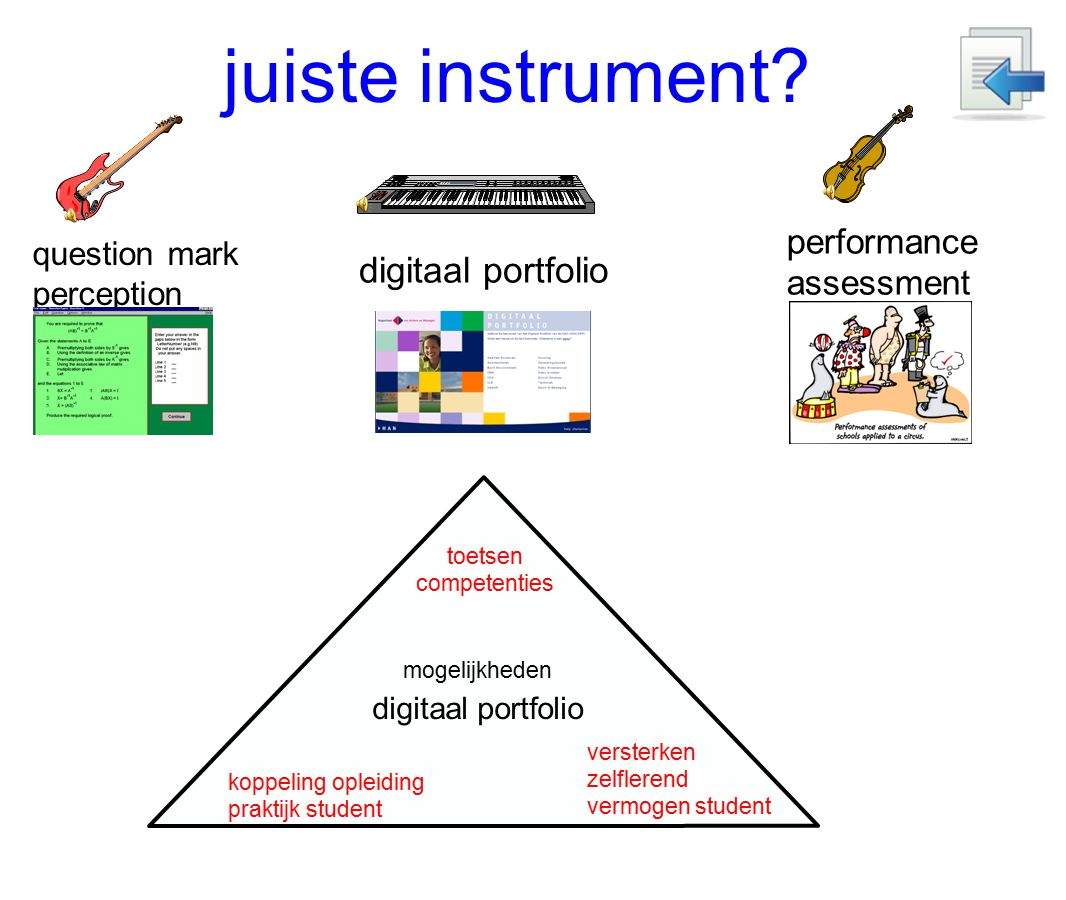 juiste instrument digitaal portfolio performance assessment