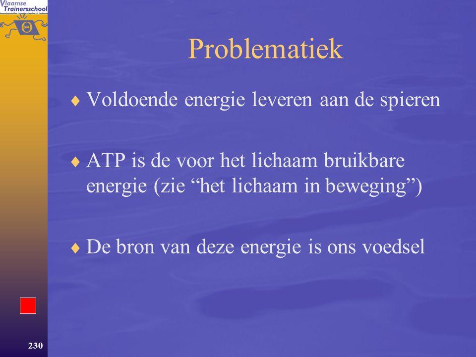 Problematiek Voldoende energie leveren aan de spieren
