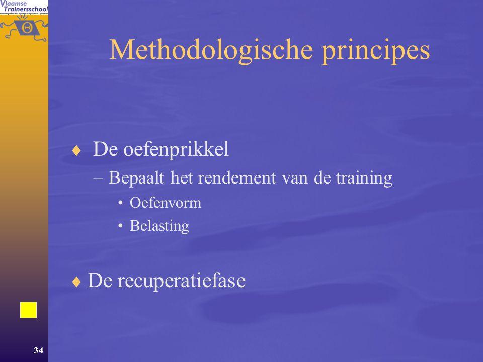 Methodologische principes