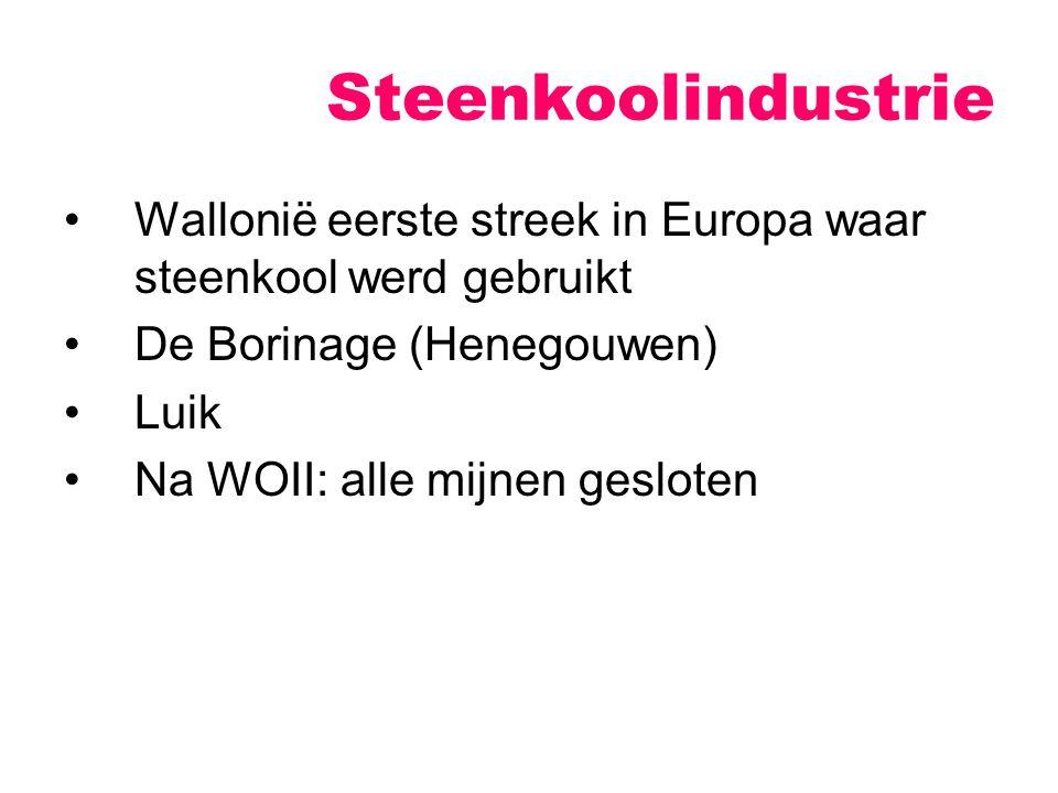 Steenkoolindustrie Wallonië eerste streek in Europa waar steenkool werd gebruikt. De Borinage (Henegouwen)