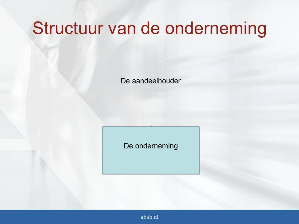 Structuur van de onderneming