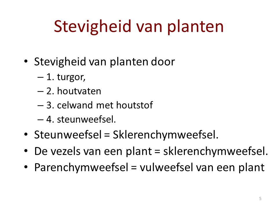Stevigheid van planten