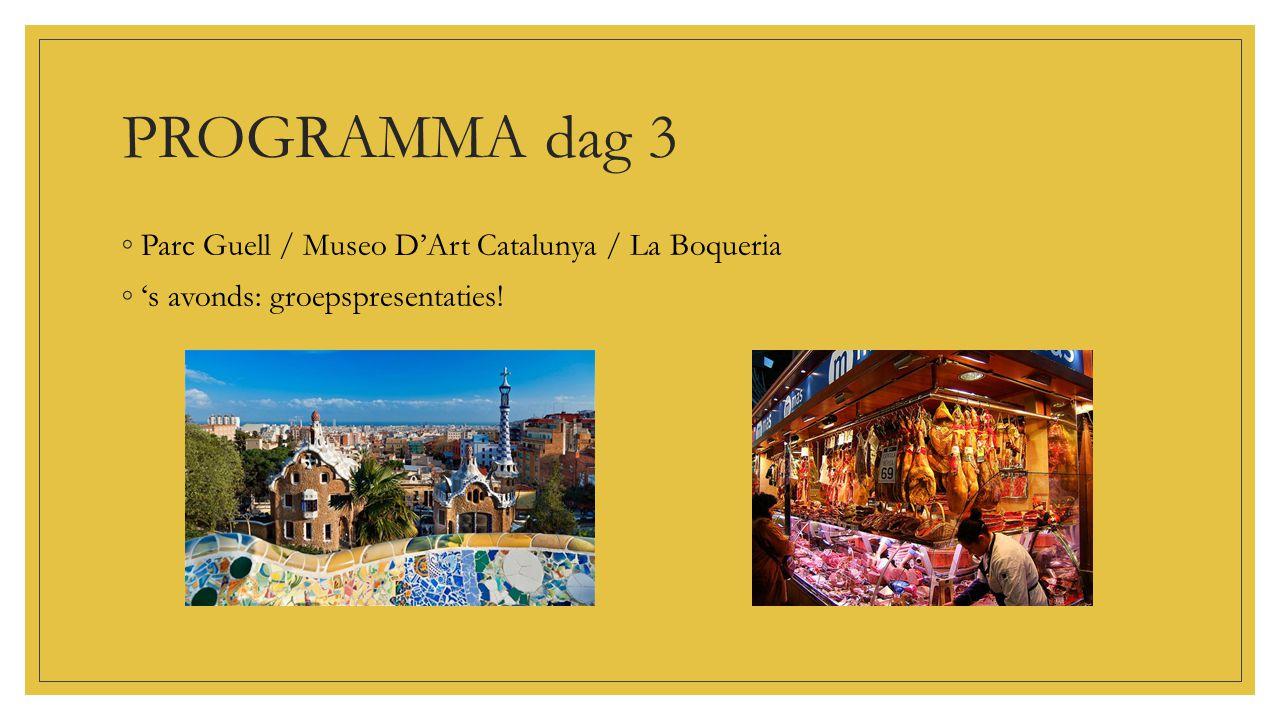 PROGRAMMA dag 3 Parc Guell / Museo D'Art Catalunya / La Boqueria