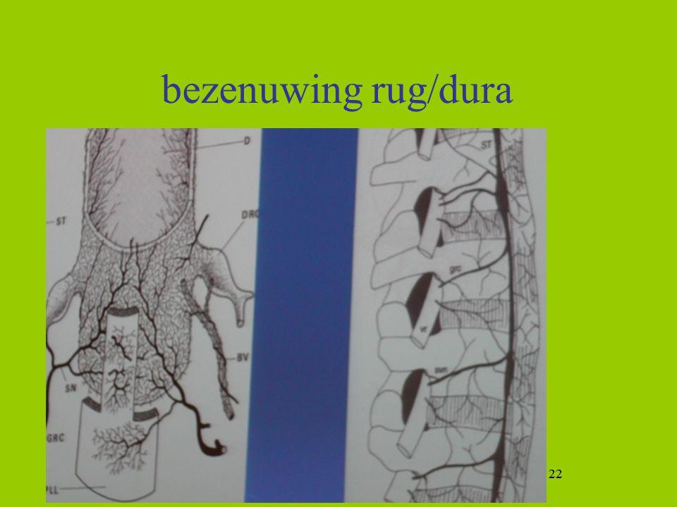bezenuwing rug/dura 22