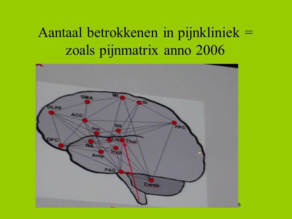 Aantaal betrokkenen in pijnkliniek = zoals pijnmatrix anno 2006
