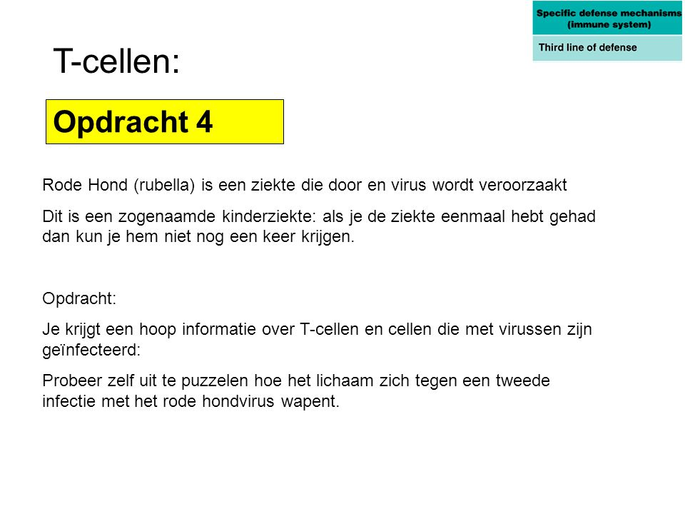 T-cellen: Opdracht 4. Rode Hond (rubella) is een ziekte die door en virus wordt veroorzaakt.