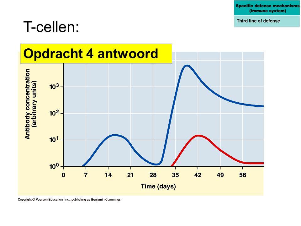 T-cellen: Opdracht 4 antwoord
