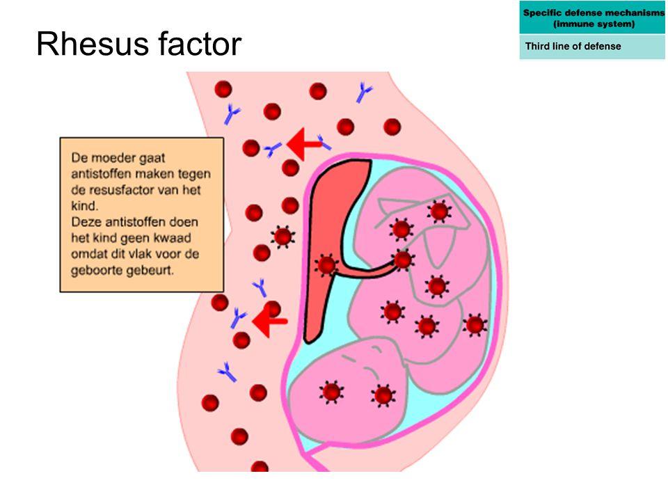 Rhesus factor