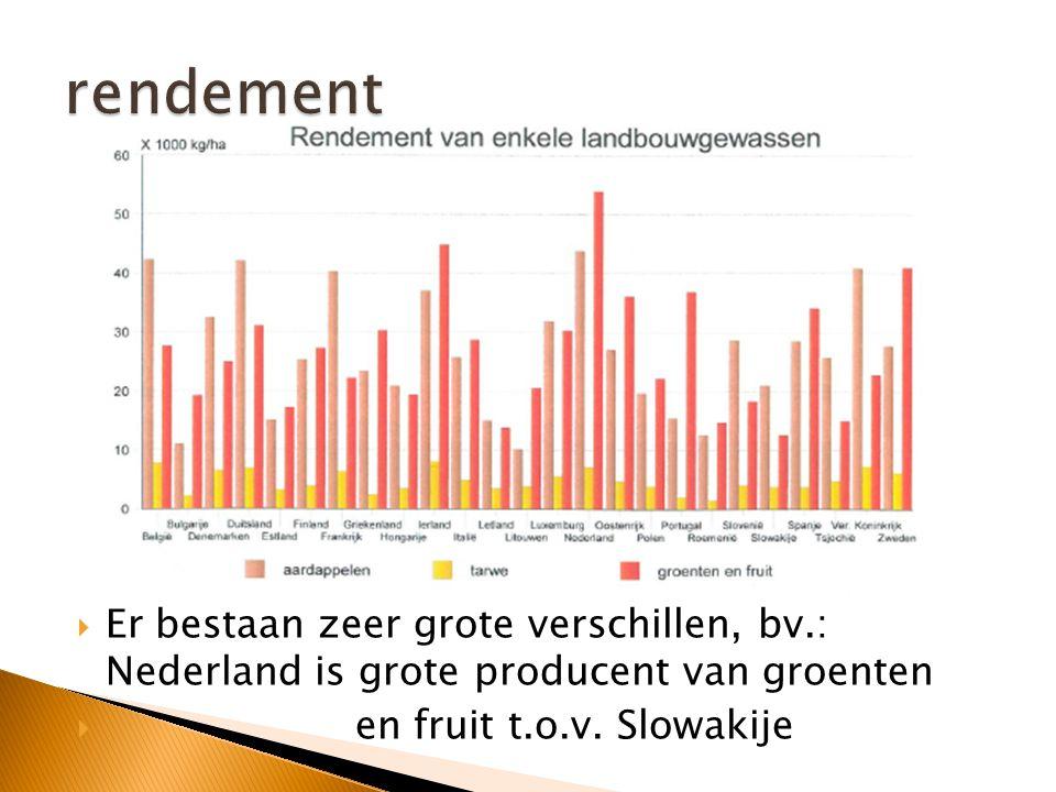 rendement Er bestaan zeer grote verschillen, bv.: Nederland is grote producent van groenten.