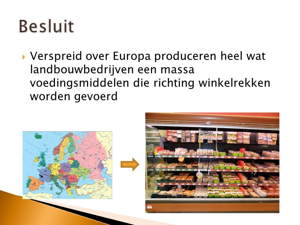 Besluit Verspreid over Europa produceren heel wat landbouwbedrijven een massa voedingsmiddelen die richting winkelrekken worden gevoerd.
