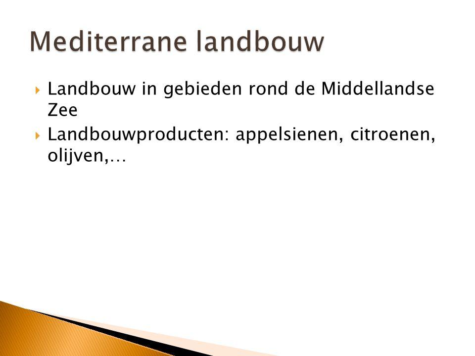 Mediterrane landbouw Landbouw in gebieden rond de Middellandse Zee