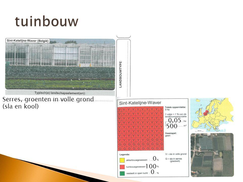 tuinbouw Serres, groenten in volle grond (sla en kool) 0,05 500 100