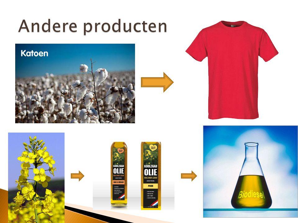 Andere producten