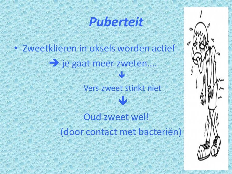 Puberteit Zweetklieren in oksels worden actief  je gaat meer zweten….