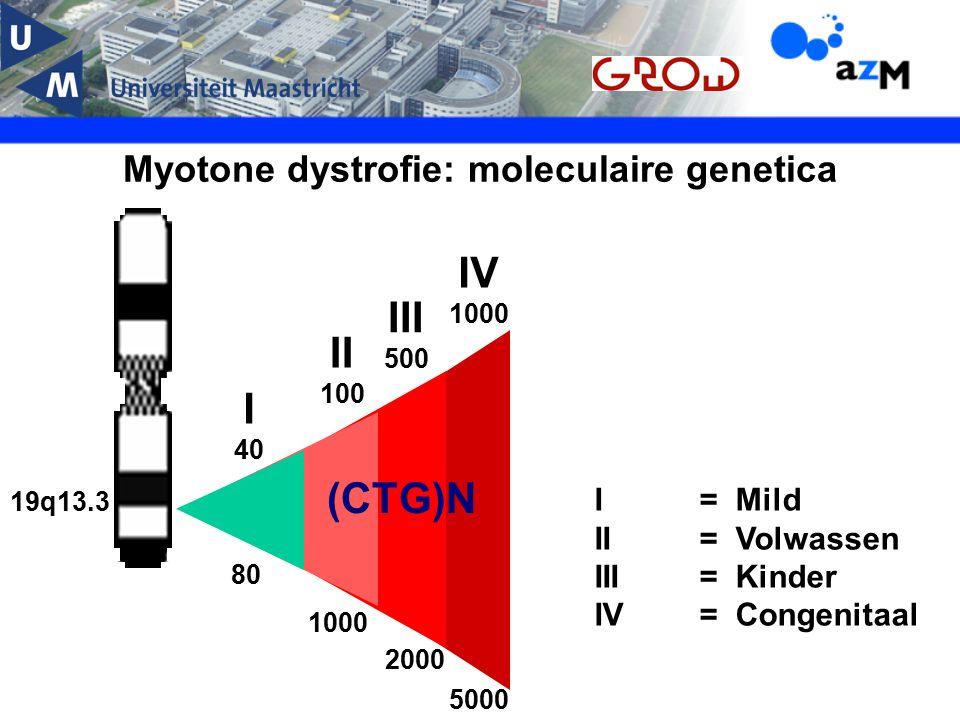Myotone dystrofie: moleculaire genetica