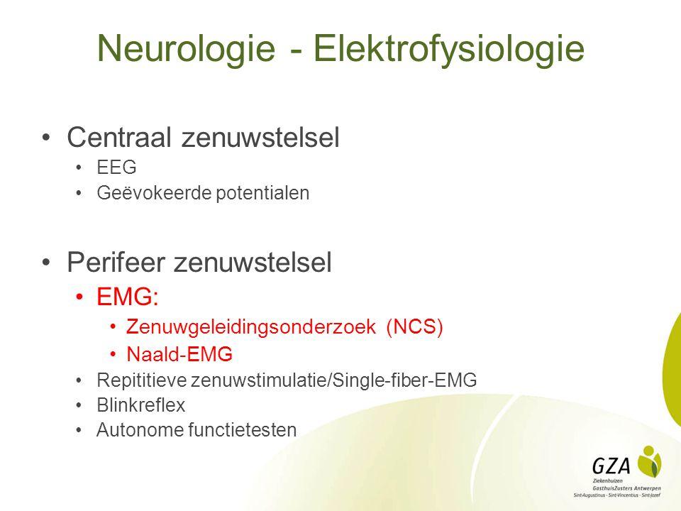 Neurologie - Elektrofysiologie