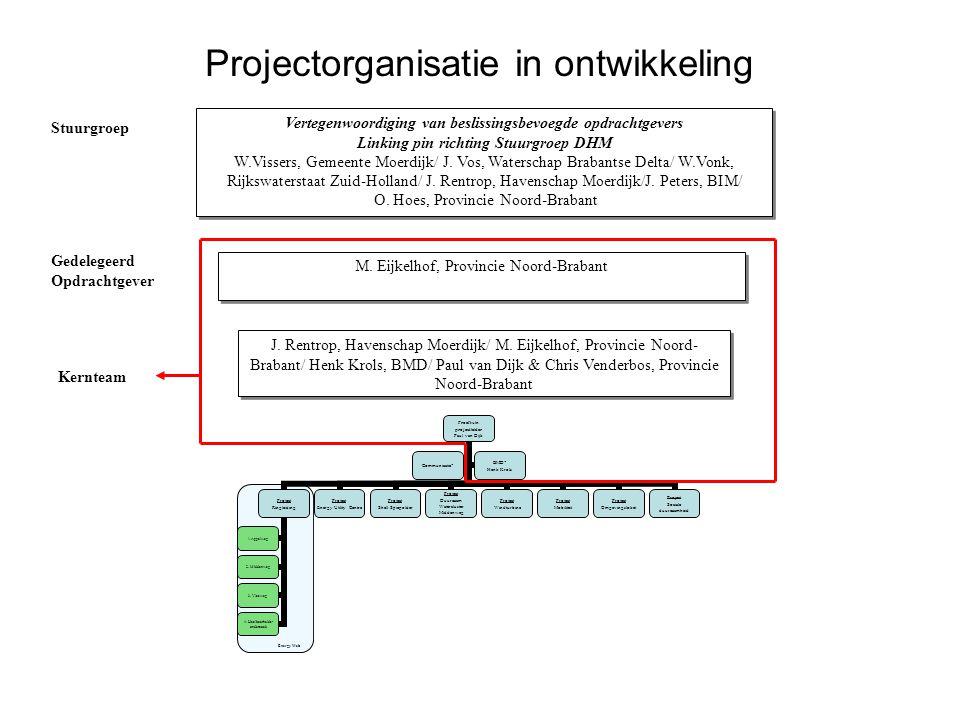 Projectorganisatie in ontwikkeling