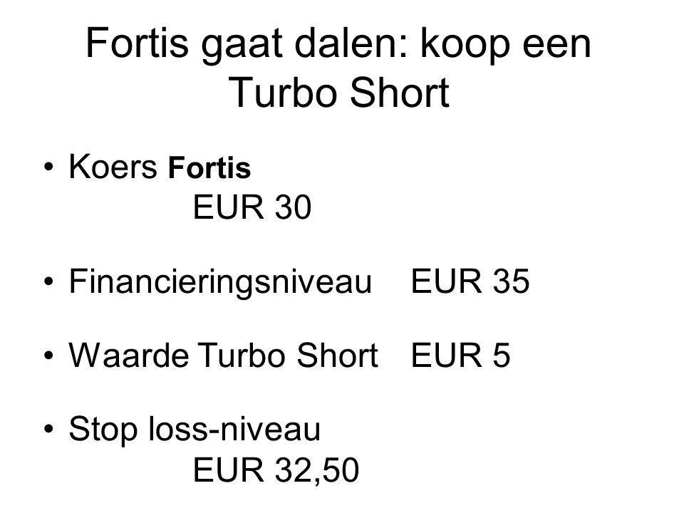 Fortis gaat dalen: koop een Turbo Short