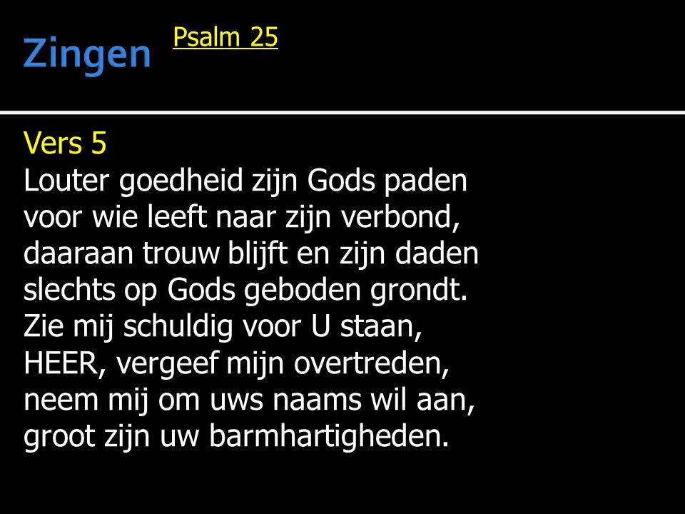 Zingen Vers 5 Louter goedheid zijn Gods paden