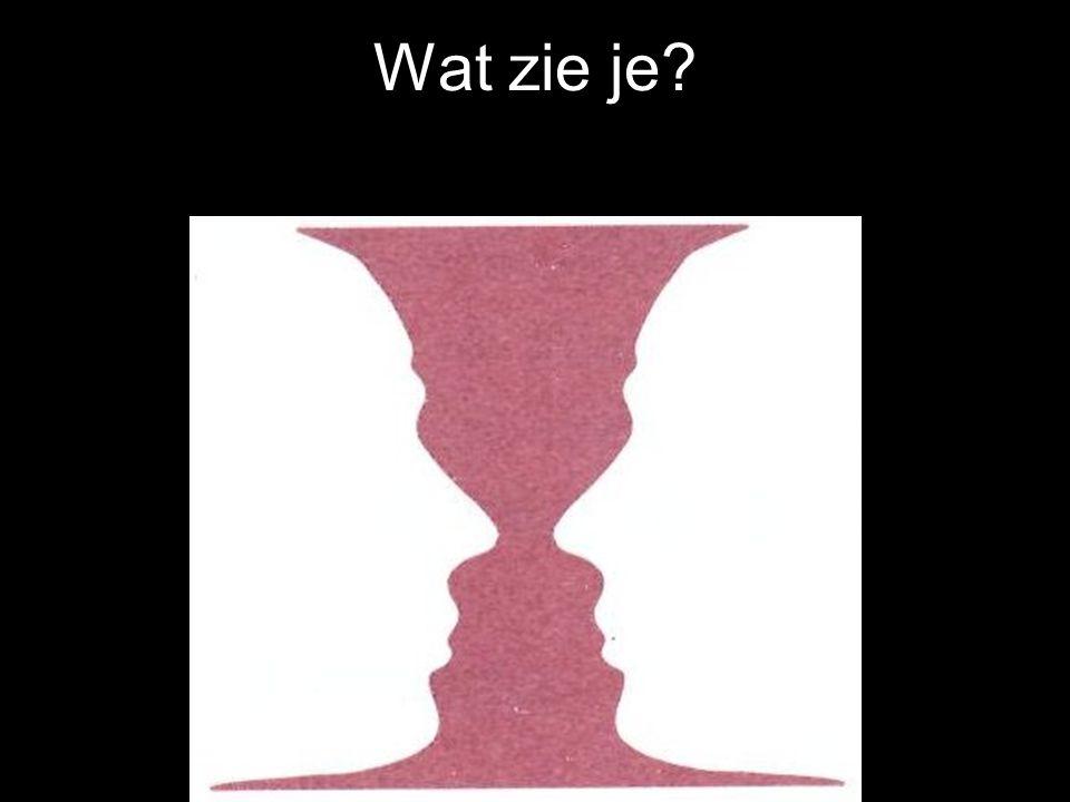 Wat zie je