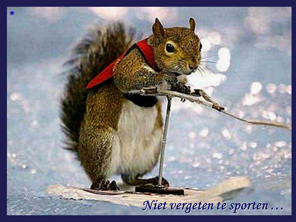 Niet vergeten te sporten …
