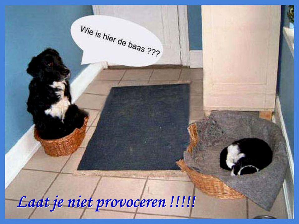 Laat je niet provoceren !!!!!