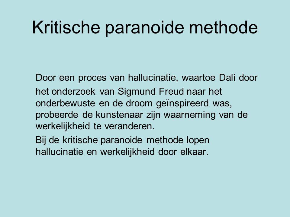 Kritische paranoide methode