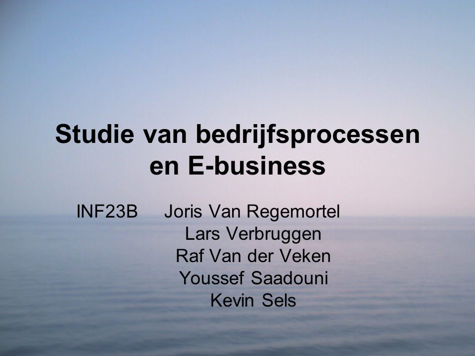 Studie van bedrijfsprocessen en E-business
