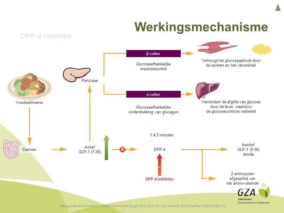 Werkingsmechanisme DPP-4 inhibitie Andere dia ingestoken - X 16