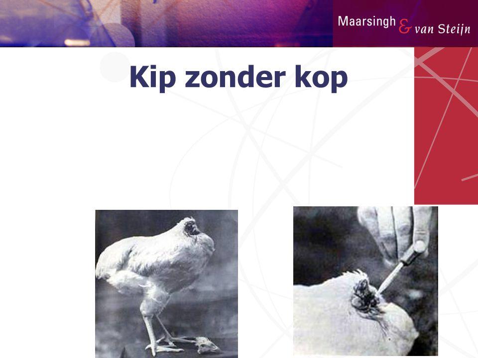Kip zonder kop 7