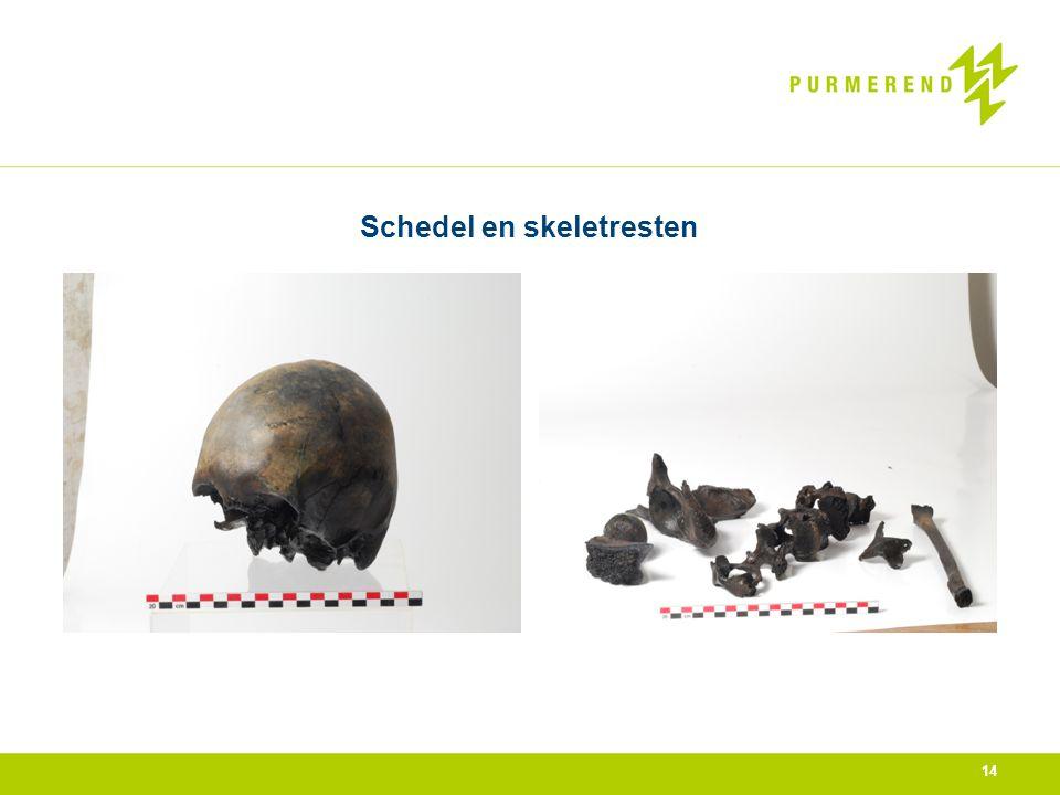 Schedel en skeletresten