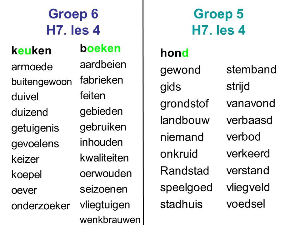 Groep 6 H7. les 4 Groep 5 H7. les 4 boeken keuken hond gewond gids