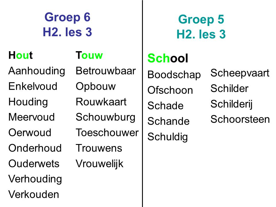Groep 6 H2. les 3 Groep 5 H2. les 3 School Hout Aanhouding Enkelvoud
