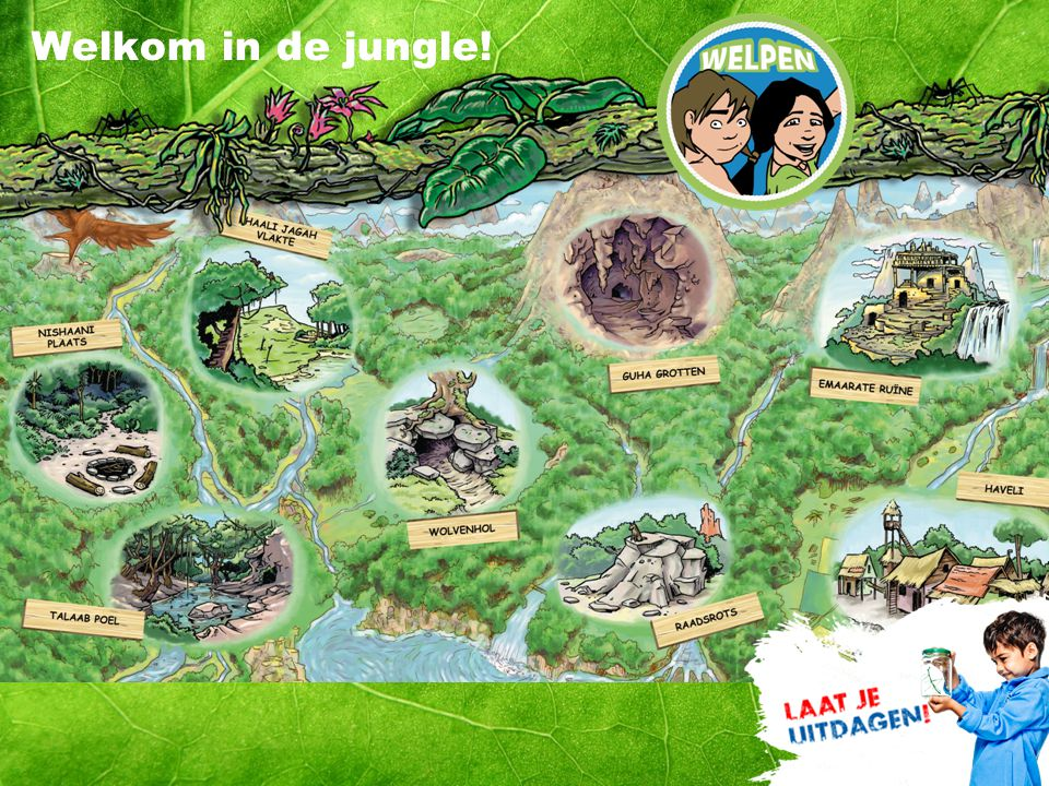 Welkom in de jungle!