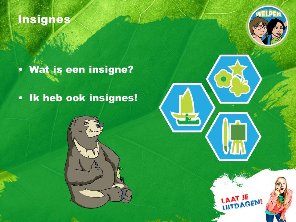 Insignes Wat is een insigne Ik heb ook insignes!